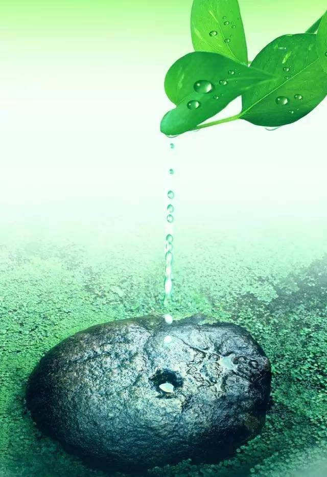 耕耘者的汗水是哺育种子成长的乳汁。
