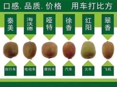 翠香猕猴桃