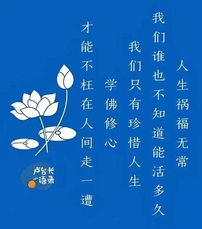 婚恋之家专题报道:不枉人间走一遭